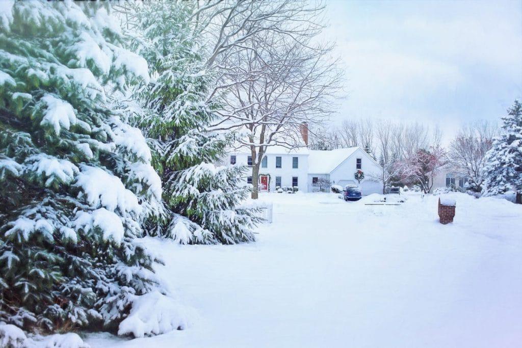 Winter pest control