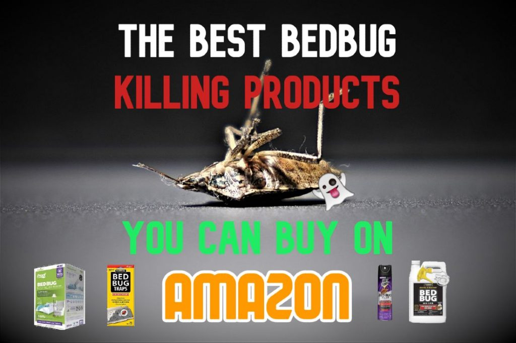 The best bedbug killing products you can buy on Amazon