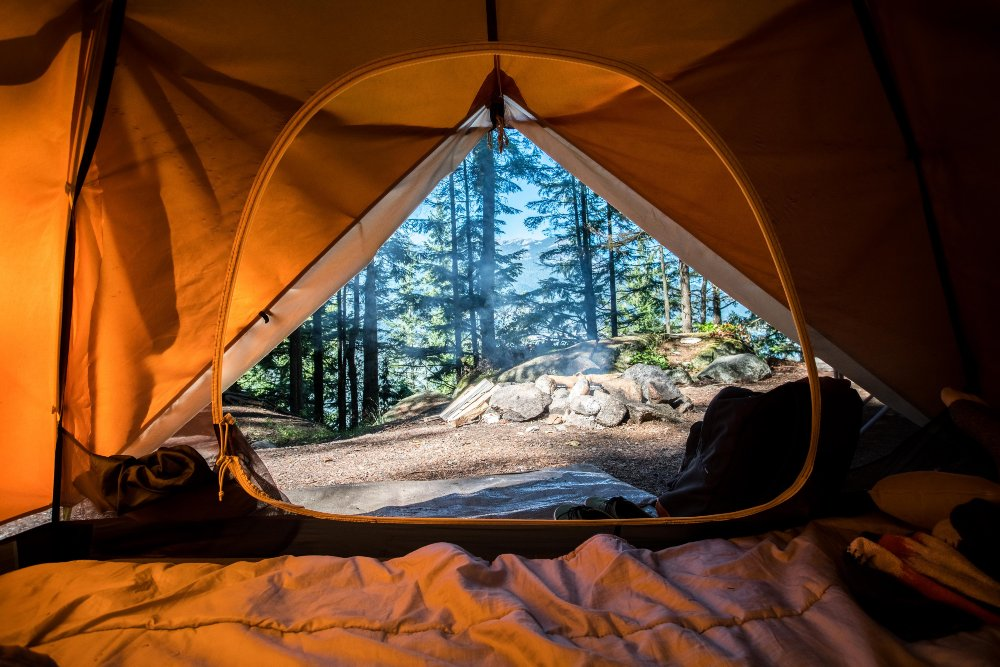a bug-free campsite