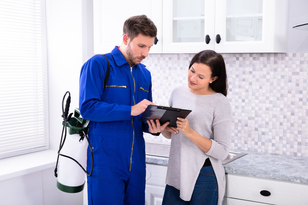 Talk to an exterminator on costs to treat bed bugs.