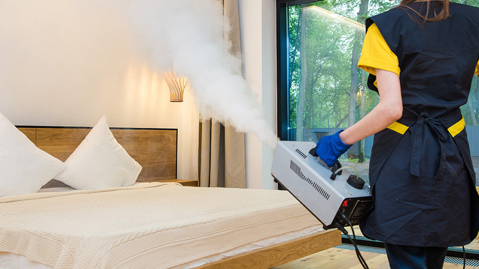 woman stream treating for bed bugs